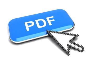 PDF button and arrow cursor