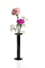 Zwei Nelken in schwarzer Vase