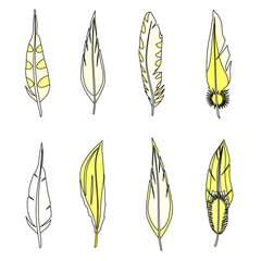 Set of feathers. Isolated on white. Vector illustration.