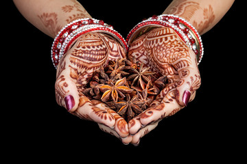 Indian star anise spices