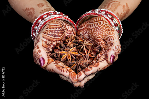 Foto op Canvas Kruiden Indian star anise spices