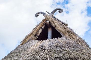 Sea serpent roof