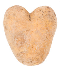 Potato in a shape of heart isolated on white background