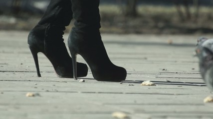 Female legs in boots and pigeons on the sidewalk