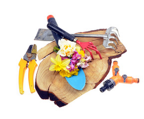 Gardening tools,flowers on old wooden  stand,isolated