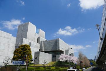 国立劇場と満開の桜 青空