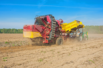 horvesting  potato view on process of work agricultural concep
