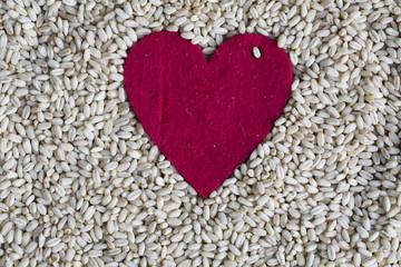 Buğday ve Tahıl