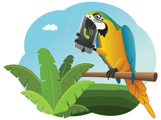 Vivid parrot sitting on the perch and talking on the smartphone