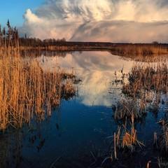 Sunset spring Lake landscape