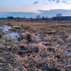 After sunset spring landscape