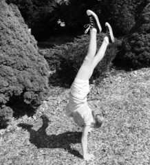 Black and White Handstands