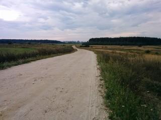 Summer road in field