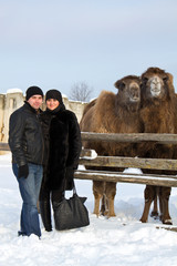 Man and woman near camel in zoo winter