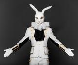 Bunny   helpless gesture poster