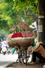 Flower Vendor, Hanoi Vietnam