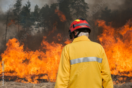 Firefighter looking on forest fire - 81130105