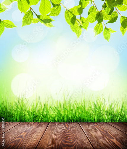 Summer background with floor, grass and bokeh - 81130590