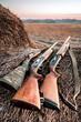 Hunting shotguns on haystack, soft focus on shutgun butt - 81130775