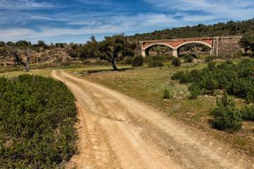 Camino y puente
