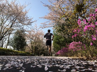 Man running on path lined with flowers