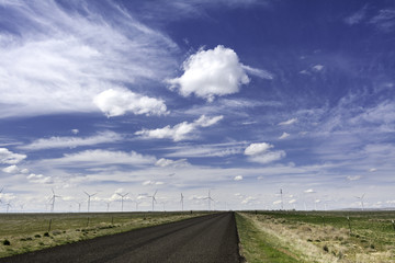 Green powered windmills generate electricity