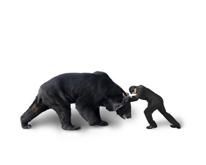Businessman fighting against black bear isolated on white