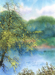 Watercolor landscape. Tree in the spring over the pond
