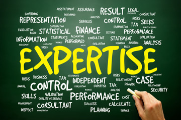EXPERTISE word cloud, business concept
