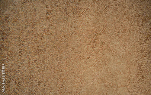 Foto op Canvas Stof Antique Leather Texture