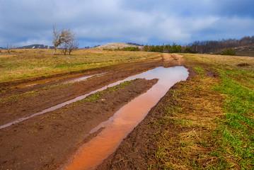 dirty road through a fields