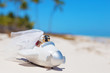 Bride and groom in small wedding plane model on the beach - 81162552