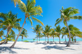 Fototapety Idyllic tropical beach with palm trees