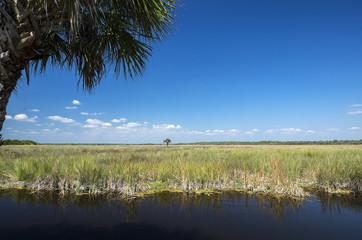 Everglades Florida USA