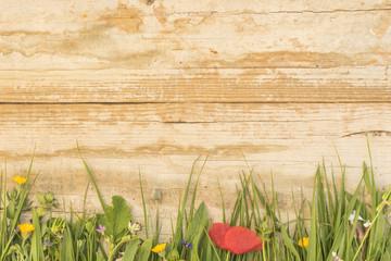 Sommerwiese mit rustikalem Hintergrund