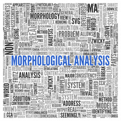 MORPHOLOGICAL ANALYSIS Word Tag Cloud Design