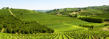 "Постер, картина, фотообои ""Summer landscape in Langhe (Italy)"""