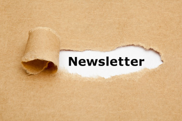 Newsletter Torn Paper Concept