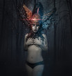 Постер, плакат: naked woman warrior valkyrie with winged helmet and sky fantas