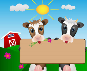 Two cows on meadow with wood board with barn and sun
