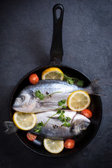 Dorada fish in pan