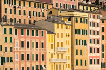 Houses of Camogli