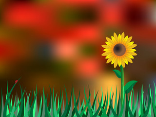 Autumn background with sunflower and blur leaves