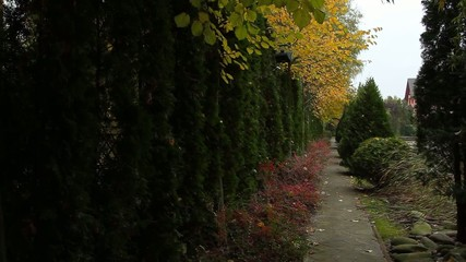 Path through the charming autumn park.