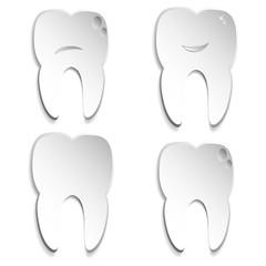 four teeth on white background
