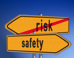 directorys risk and safety