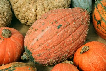 Kürbise Gemüse Pumpkins Halloween