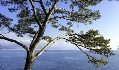 Ligurian Sea shoreline in wintertime. Color image