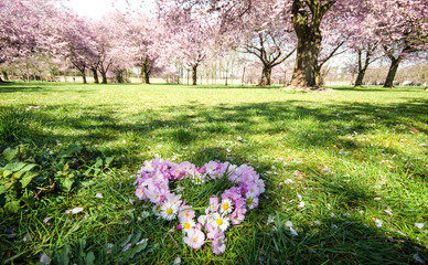 Springtime: Love is in the air :)