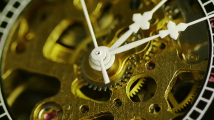 Pocket Watch Close Up Lapse